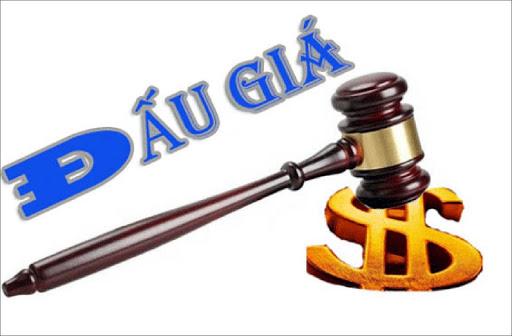 Thông báo về việc lựa chọn Tổ chức đấu giá tài sản tịch thu được xác lập quyền sở hữu toàn dân